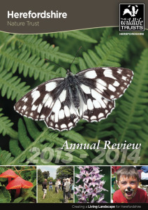 HNT Annual Review 2014