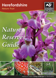 Reserve Guide cover