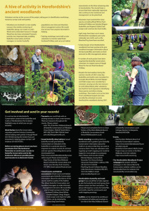 'Fritillary' newsletter (inside)