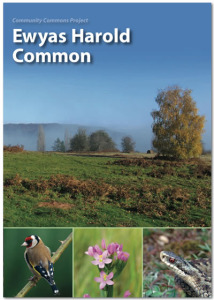 Ewyas Harold Common guide book