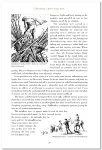 history_lhf_pg30