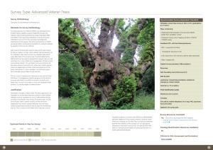 Herefordshire Parklands Best Practice Guide - spread
