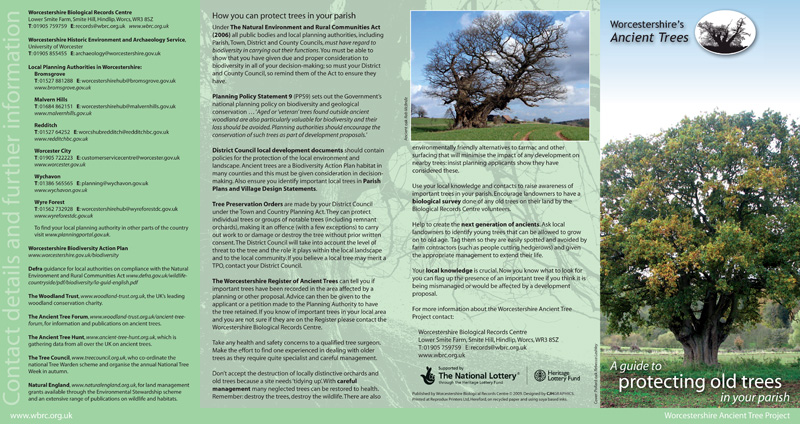 Tree Protection leaflet (outside)