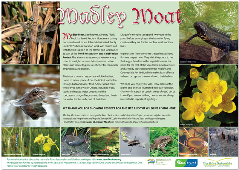 Madley Moat interpretation panel