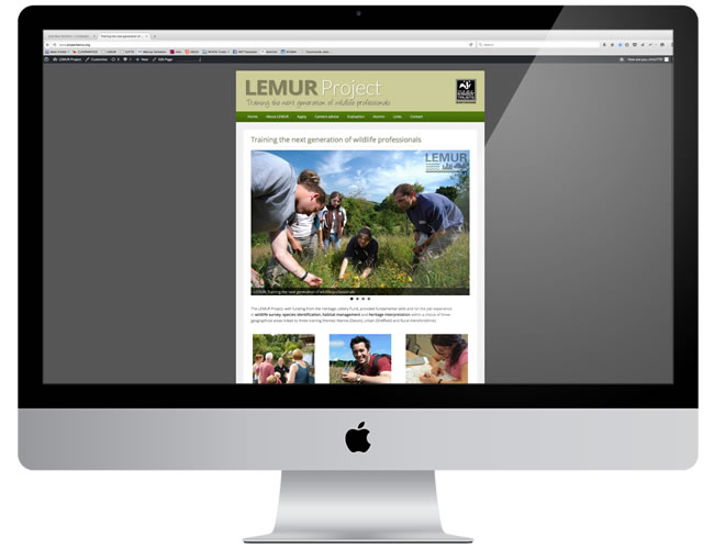 web_lemur