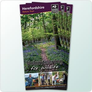 'Volunteer for Wildlife' leaflet